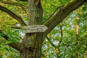 Hiunab zum Laubach Wasserfall-Me1 Melsbach