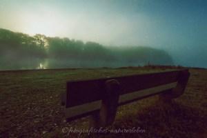 Bank an der Bevertalsperre im Nebel