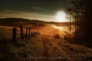 Sonnenaufgang mit Nebelstimmung