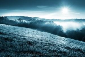 """Wiese in Nebel gehüllt """"Avatarlook"""""""