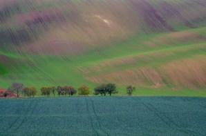 Fot. Anna Gryczon