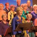 FGZ - 2015-03 Concert Windkracht Vier - 036 - Bertus van Gils