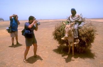 Cabo Verde, Isla de Sal, Pedra de lume, Fotografiando al pastor del rebaño de cabras