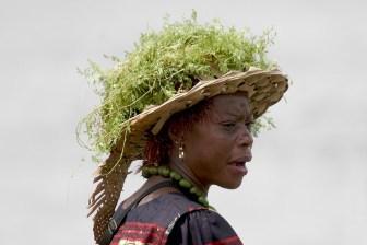 Camerún, Douala, fiesta Ngondo, Fiesta del Agua