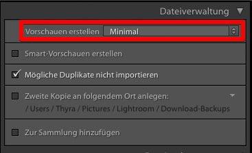"""Ausschnitt Import-Dialog - Dateiverwaltung mit Vorschaueinstellung """"Minimal"""""""