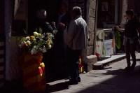 04 _moncat_Sant Jordi 2015_003