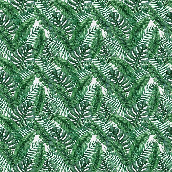 Papel Tapiz Palmera Tropical