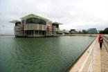 Lizbona - oceanarium