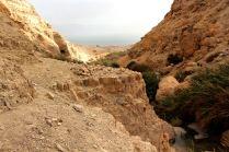Rezerwat En Gedi
