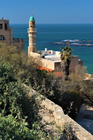 Meczet Al - Bahr