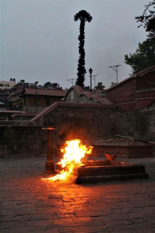 Świątynia Pasupatinath