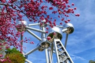 Bruksela północna