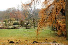 Park Westfalen