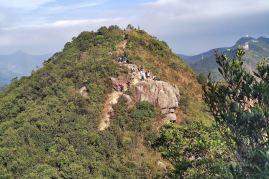 Lion Rock Head