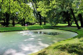 Park Pałacu Pławniowice