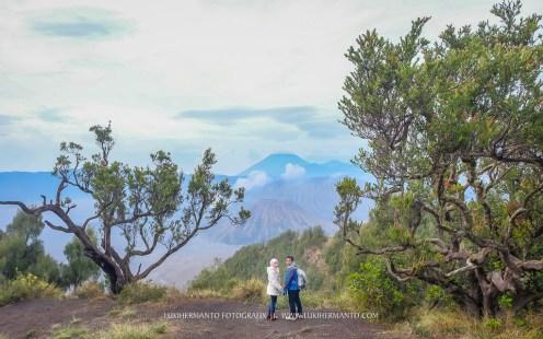 foto prewedding di gunung bromo