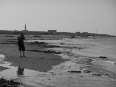 Texel 2012 (842)