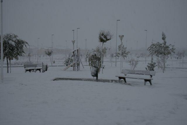 Bullas. Nieve dibuja el paisaje.