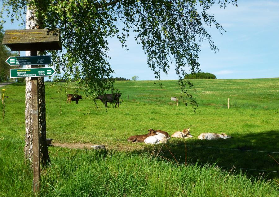Gemeinde LichtenbergErzgebirge  Herzlich willkommen