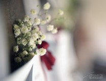 particolari: i fiori del tabloid