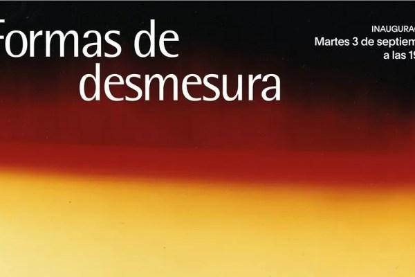 FORMAS DE DESMESURA EN EL MUSEO BELLAS ARTES