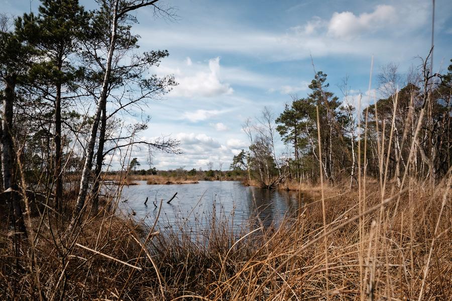 Landschaftsfoto mit viel Schärfentiefe: 22 mm, f/5.6, 1/250