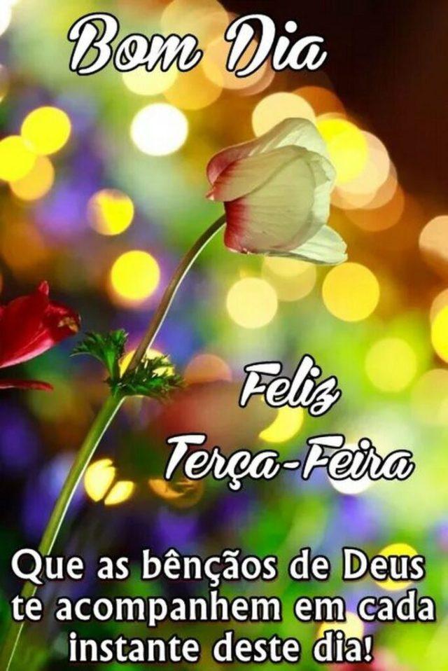 Feliz terça feira! Que a benção de Deus te acompanhe!