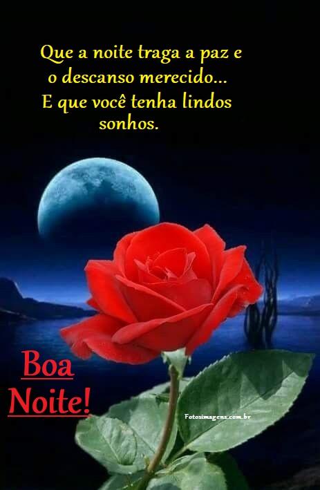 Boa noite com luar e rosa vermelha
