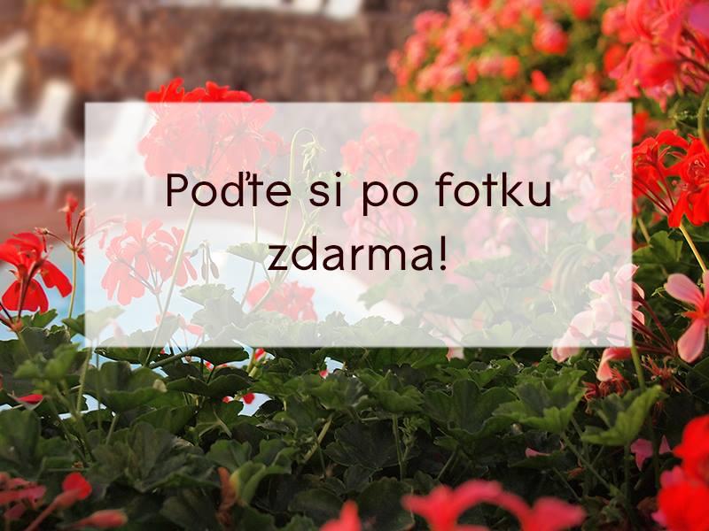 Foto-Sluka-akcia_na_preukazove_fotky