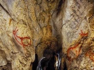 La cueva de Covalanas por dentro