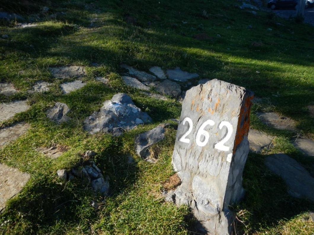 Piedra de San Martin