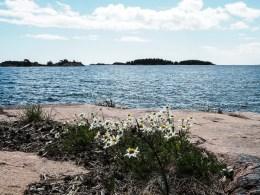 Schweden-5290683