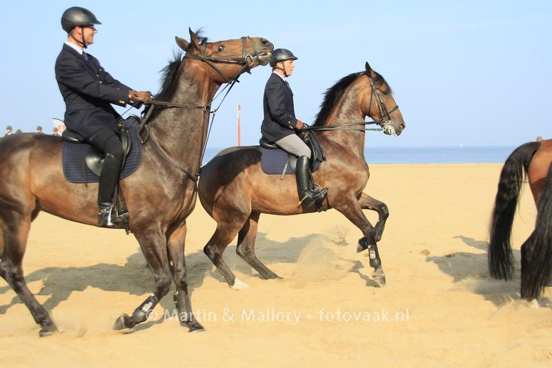 Prinsjesdag paarden
