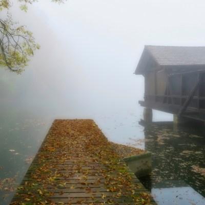 'Misty' Chrüzweier