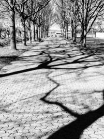Shadows creating black lightning