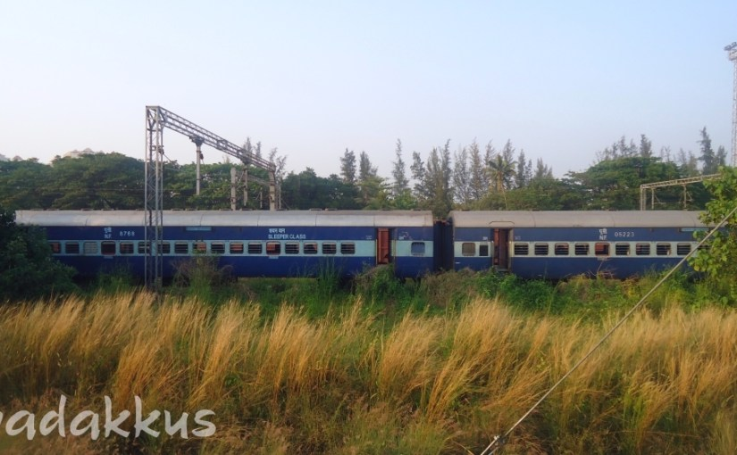 The Empty Train Stretches out in the Grass…