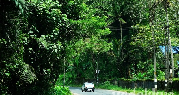 A photo of the MC Road in Kerala