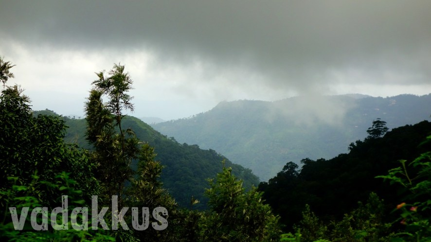 From the Highranges of Kerala: Calm Hills, Angry Clouds, Happy Flora