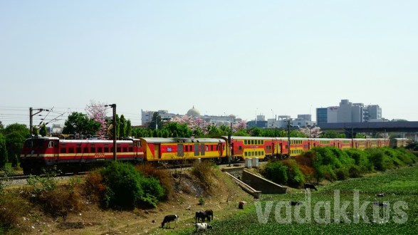 Clash of Colors as the Full-Length Double Decker Slides Past Tin Factory