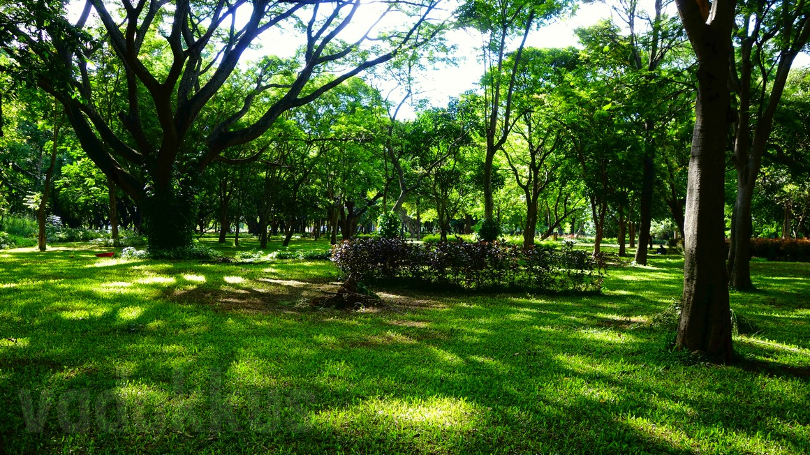Photo of the Bangalore Cubbon Park on a Sunny Sunday Afternoon.