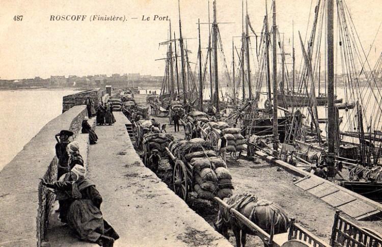 ROSCOFF um 1900 - Einschiffung von Gemüse für England
