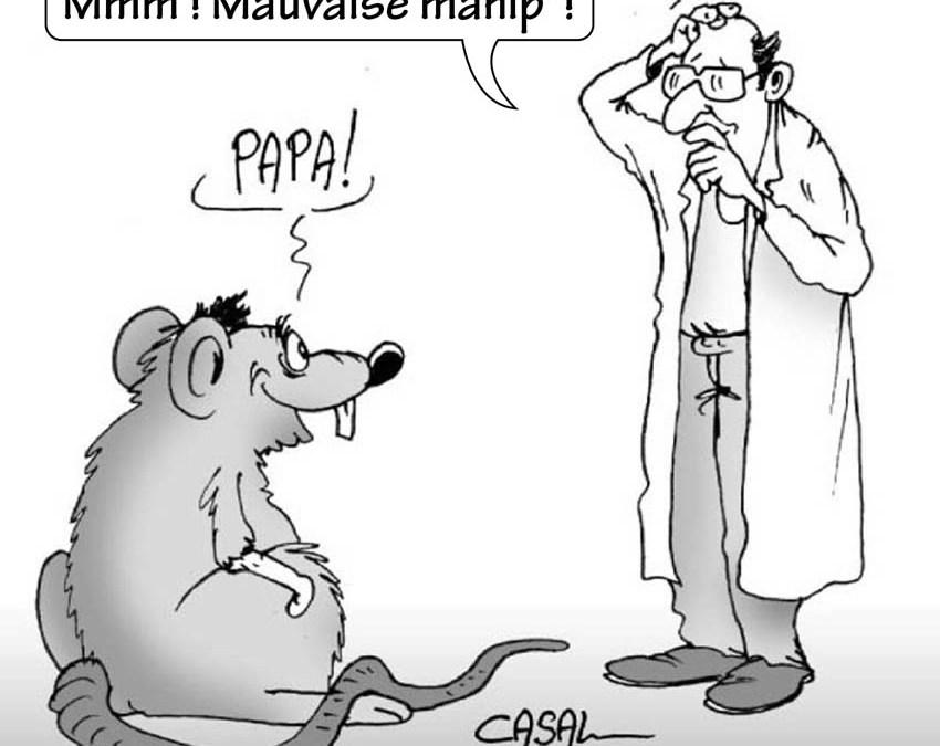 Manipuler