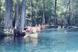 Canoeing in the Forest