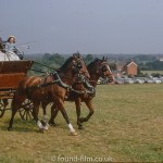 Horse and Carriage racing