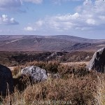 Dartmoor in Devon near Postbridge in October 1964
