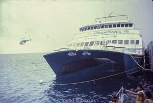 Reef King Catamaran