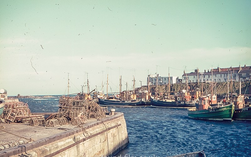 The harbour at Seahouses