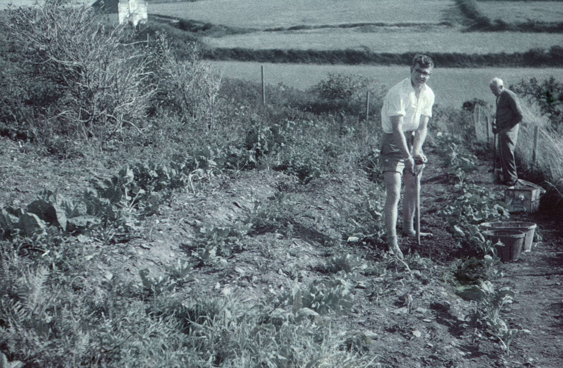 Very faded picture of a man gardening