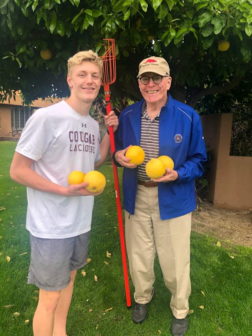 grapefruit picking 2020