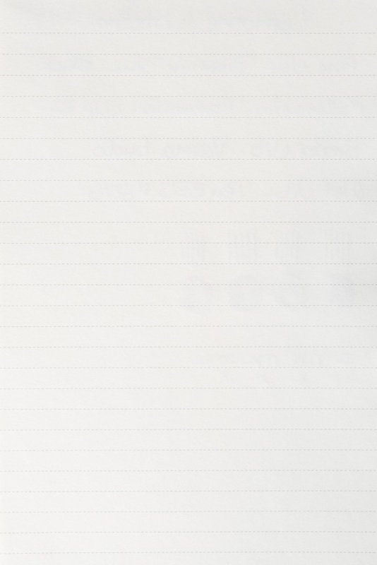 Lemone Notebook Review paper test back